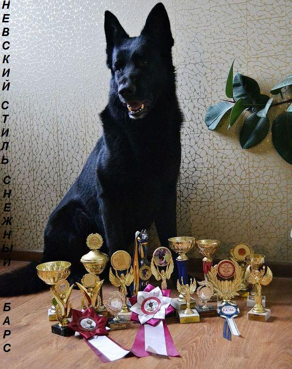 РАСТИСЛАВА (Харьков) DSC_3890-1-